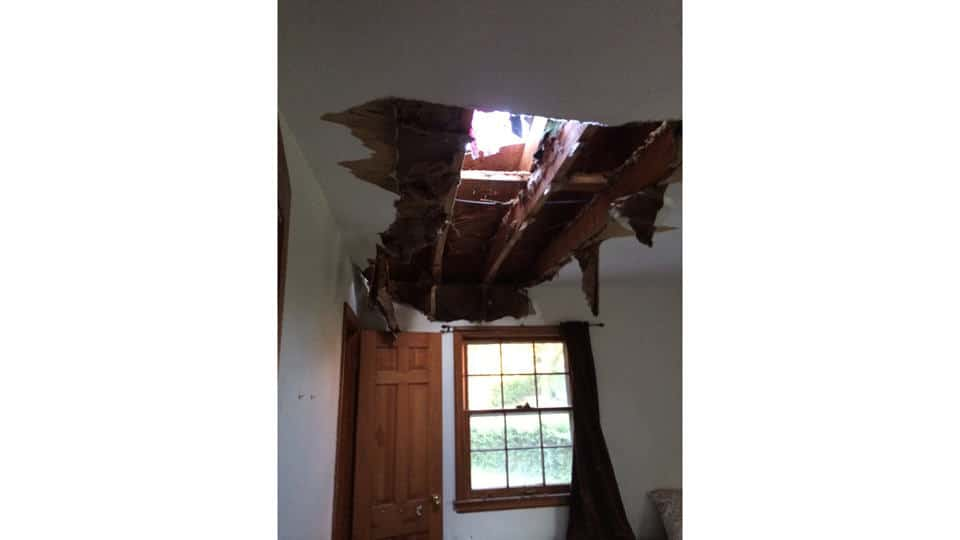 Hole in ceiling after tree falls.